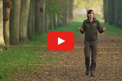 Filmpje: Onze landgoederen