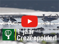 Filmpje Crezéepolder